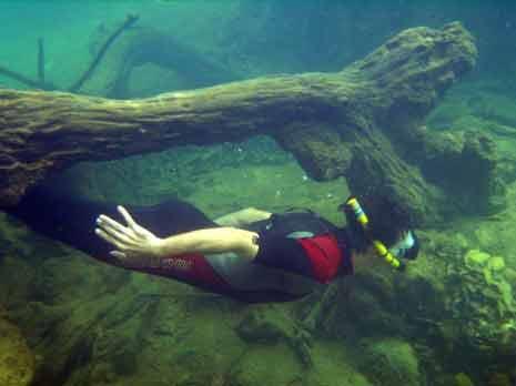 Parque Ecológico Rio Formoso (Flutuação e Mergulho)