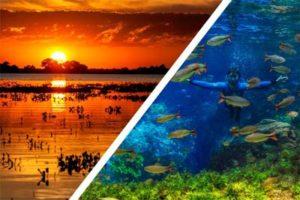 , Bonito e Pantanal, uma viagem de experiências!