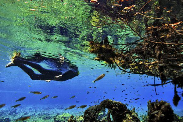 Flutuação no Rio da Prata em Bonito - MS