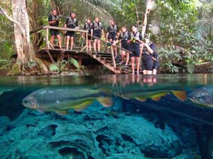 Visite Aquário Natural de Bonito