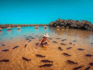 Praia da Figueira - um dos Balneários onde desfilam os bikines de Bonito!